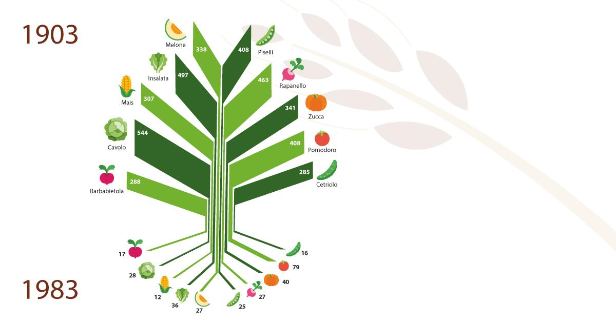 Di semi, di piante e di altre estinzioni